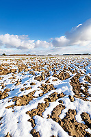 Winter ploughing with snow covering - Lincolnshire, February