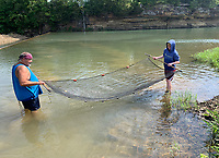 Larry Mulanax (left) and his son, Braydon Mulanax, 15, both of Springdale, use a net Friday, July 30, 2021, to catch minnows at Riverside Park in West Fork. The pair were collecting bait to fish in the West Fork of the White River. Visit nwaonline.com/210731Daily/ for today's photo gallery.<br /> (NWA Democrat-Gazette/Andy Shupe)