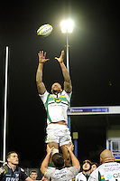 Courtney Lawes of Northampton Saints takes the lineout ball during the LV= Cup second round match between Ospreys and Northampton Saints at Riverside Hardware Brewery Field, Bridgend (Photo by Rob Munro)