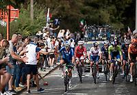 Sonny Colbrelli (ITA/Bahrain - Victorious) fatching a last bidon<br /> <br /> Elite Men World Championships - Road Race<br /> from Antwerp to Leuven (268.3km)<br /> <br /> UCI Road World Championships - Flanders Belgium 2021<br /> <br /> ©kramon