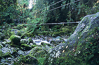 A 3 wire swingbridge over a stream with green mossy boulders on the Hollyford Track - Fiordland National Park