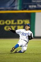 Burlington right fielder Alwin Perez (13) tries to make a sliding catch versus Johnson City at Burlington Athletic Park in Burlington, NC, Saturday, August 25, 2007.