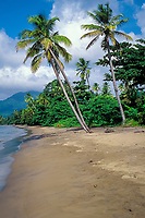 beach on northwest coast of Dominica, West Indies (Eastern Caribbean), Atlantic