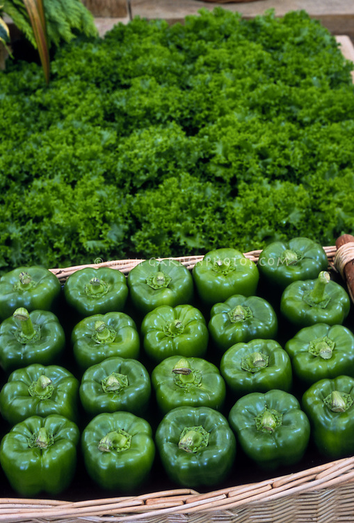 Green bell peppers, picked, in wicker basket, sweet peppers