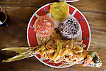 Plate of typical Caribbean red snapper from a restaurant in Old Bank, Isla Bastimentos, Bocas del Toro, Panama
