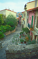 A cobble stone street decorated with flowers and coloured houses leading down to the harbour in the fishing village Collioure, Languedoc-Roussillon, France