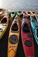 Colorful Kayaks, Lake Sammamish State Park, Issaquah, Washington State, WA, America, USA.