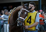 September 22, 2012. Alpha in the walking ring before the Pennsylvania Derby. Handsome Mike, ridden by Irad Ortiz Jr. and trained by Leandro Mora, wins the Gr. II Pennsylvania Derby at Parx Racing in Bensalem, Pennsylvania. (Joan Fairman Kanes/Eclipse Sportswire)