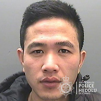 """Pictured: Tuan Van Doan<br /> Re: The ringleaders of a Vietnamese crime gang have been jailed after police seized 2.5 tonnes of cannabis worth about £6m in raids across south Wales.<br /> A total of 21 people have been sentenced in a case going back to 2017 after dozens of cannabis factories were uncovered across the region and beyond.<br /> One of the defendants initially claimed to be 14 years old, but police proved he was actually aged 26.<br /> The gang leaders were sentenced at Merthyr Tydfil Crown Court on Friday.<br /> Bang Xuan Luong, 44, was sentenced to eight years in prison. His partner, 42-year-old Vu Thi Thu Thuy, was jailed for six years and Tuan Anh Pham, 20, who was described in court as the """"IT Man"""", received five years.<br /> An investigation into a cannabis factory in the Cynon Valley led officers from South Wales Police's Force Intelligence and Organised Crime Unit (FIOCU) to a string of others across south Wales, Gwent and Dyfed-Powys force areas."""