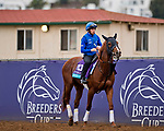 DEL MAR, CA - NOVEMBER 01: Masar, owned by Godolphin Stable Lessee and trained by Charlie Appleby, exercises in preparation for Breeders' Cup Juvenile Turf at Del Mar Thoroughbred Club on November 1, 2017 in Del Mar, California. (Photo by Scott Serio/Eclipse Sportswire/Breeders Cup)