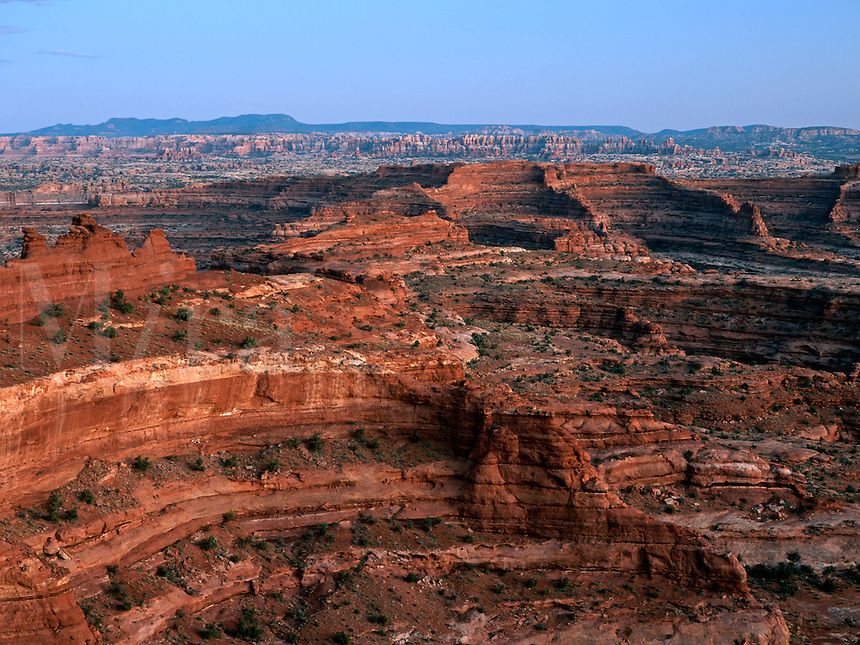 The needles of the Needles District of Canyonlands National Park can be seen in the background of this view looking south from the White Crack Campground in the Island in the Sky District.