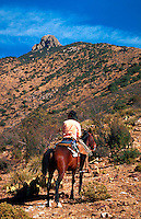 A rancher on horseback monitors rangeland in the rugged Dos Cabezas Mountains. Arizona.