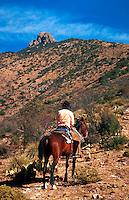 A rancher on horseback monitors rangeland in the rugged Dos Cabezas Mountains. Arizona.