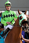 March 2010: Stay Put and Jamie Theriot before the Louisiana Derby at the Fair Grounds in New Orleans, La.