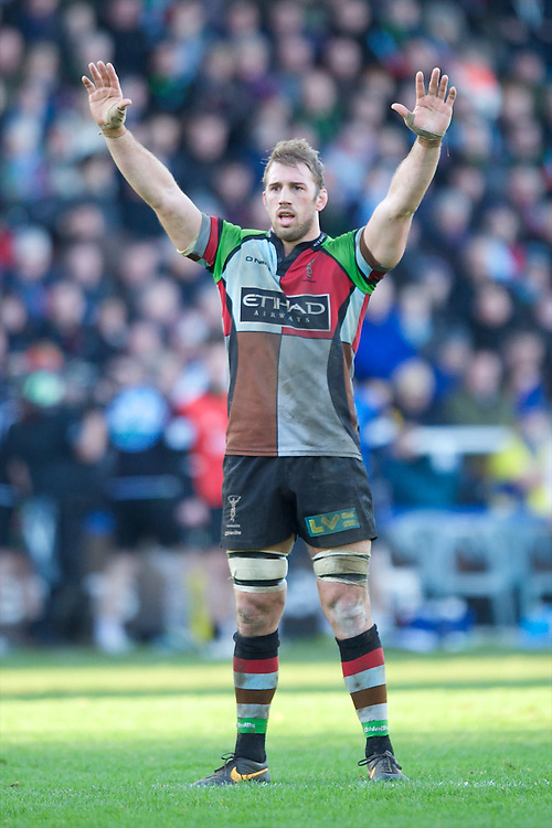Chris Robshaw of Harlequins during the Heineken Cup Round 5 match between Harlequins and ASM Clermont Auvergne at the Twickenham Stoop on Saturday 11th January 2014 (Photo by Rob Munro)