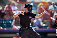 Umpire Tom Hanahan during an Eastern League game between the Harrisburg Senators and Erie SeaWolves on June 30, 2019 at UPMC Park in Erie, Pennsylvania.  Erie defeated Harrisburg 4-2.  (Mike Janes/Four Seam Images)