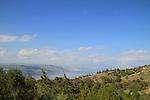Mevo Hamma forest in the Golan Heights