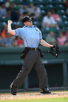 Home plate umpire John Budka works a game between the Greenville Drive and the Asheville Tourists on Sunday, June 3, 2018, at Fluor Field at the West End in Greenville, South Carolina. Greenville won, 7-6. (Tom Priddy/Four Seam Images)
