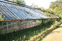 A row of traditional glass houses dominates one area of the garden
