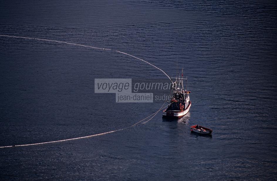"""USA/Etats-Unis/Alaska/Env de Ketchikan : Pêche aux saumons à l'aide d'un vaste filet rond, la """"senne"""" qui se resserre en boucle - vue aérienne-"""