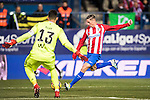 Fernando Torres of Atletico de Madrid in action during their La Liga 2016-17 match between Atletico de Madrid vs Real Betis Balompie at the Vicente Calderon Stadium on 14 January 2017 in Madrid, Spain. Photo by Diego Gonzalez Souto / Power Sport Images