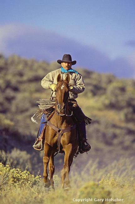 Cowboy on horse running. Ponderosa Ranch, Seneca, OR. MR