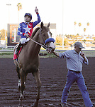 Blueskiesnrainbows (no. 1), ridden by Martin Pedroza and trained by Jerry Hollendorfer, wins the 35th running of the grade 3 Native Diver Stakes for three year olds and upward on December 14, 2013 at Hollywood Park in Inglewood, California.  (Bob Mayberger/Eclipse Sportswire)