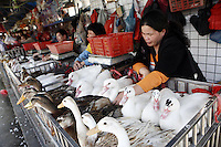 A woman tends to her ducks in the Futian agriculture and produce market.<br />