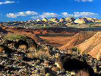 Art in Nature 9609-0173 - Landscape of Notom Desert in southern Utah. Utah.