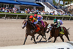 March 27, 2021: Basin #7, ridden by jockey Jose Ortiz, wins the Sir Shackleton Stakes on Florida Derby Day at Gulfstream Park in Hallandale Beach, Florida. Liz Lamont/Eclipse Sportswire/CSM