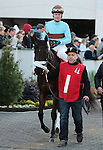 Pow Wow Wow and Calvin Borel in the 9th race, The Golden Rod Grade 2 $150,000 at Churchill Downs.  November 24, 2012.