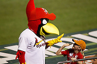 "Springfield Cardinals Mascot ""Louie"" high-fives a young fan during a game against the Tulsa Drillers at Hammons Field on July 19, 2011 in Springfield, Missouri. Tulsa defeated Springfield 17-11. (David Welker / Four Seam Images)"