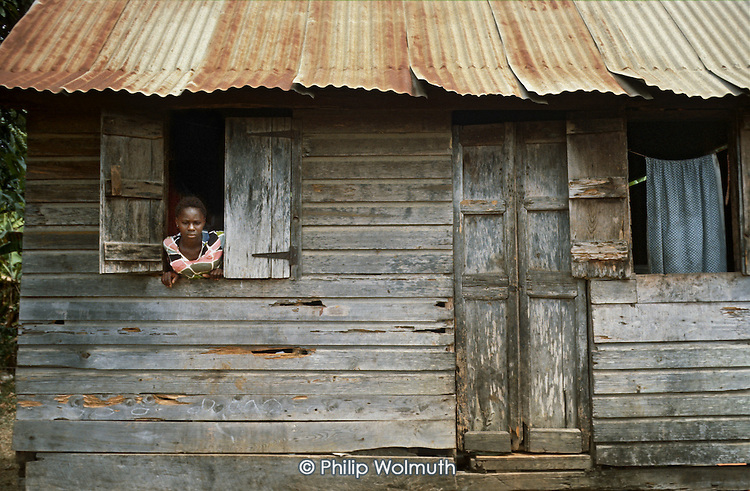 A young woman at the window of a decaying wood and corrugated iron house in Telescope.  Many such houses were replaced under a  housing programme introduced by Maurice Bishop's People's Revolutionary Government.