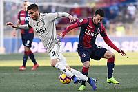 Rodrigo Bentancur of Juventus , Nicola Sansone of Bologna <br /> Bologna 24-02-2019 Stadio Dall'Ara <br /> Football Serie A 2018/2019 Bologna - Juventus<br /> Foto Image Sport / Insidefoto
