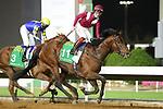 02-20-21 Saudi Cup King Abdulaziz Racecourse