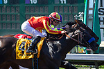 CERRITOS, CA  JULY 14:  #4 Once On Whiskey, ridden by Flavien Prat, noses out #1 Draft Pick, ridden by Joseph Talamo, to win the Los Alamitos Derby (Grade lll) on July 14, 2018, at Los Alamitos Race Course in Cerritos, CA.(Photo by Casey Phillips/Eclipse Sportswire/Getty Images)