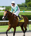 10 July 2010: Dream Of Atlantis and Jockey Elvis Trujillo after the Carry Back  Stakes at Calder Race Course in Miami Gardens, FL.