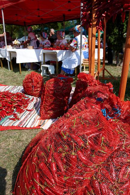 Women in Kalocsa traditional dress threading strings of  chilis to be  dried at Hungary's paprika capital - Kalacsa, Hungary.