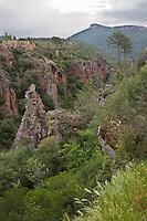 Europe/France/Provence-Alpes-Côte d'Azur/83/Var/ Callas: les Gorges de Pennafort