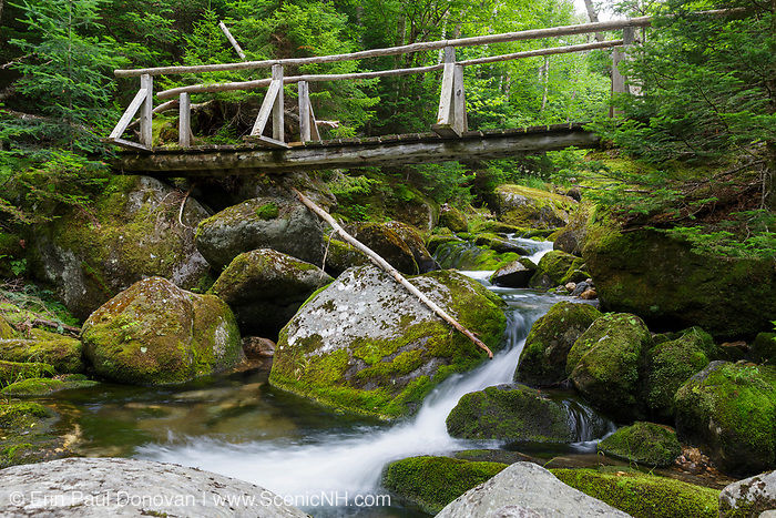 The Sanders Bridge along the Randolph Path in Low and Burbank's Grant, New Hampshire during the summer months. Originally built in 1976, this footbridge crosses the Cold Brook; and it is a memorial to Miriam Sanders, who was the treasurer of the Randolph Mountain Club for many years.