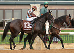 """October 07, 2018 : #13 Jo Jo Air and jockey Julio Garcia in the 1st running of The Indian Summer $200,000 """"Win and You're In Breeders' CupJuvenile Turf Sprint Division"""" for trainer Mark Casse and owner John Oxley  at Keeneland Race Course on October 07, 2018 in Lexington, KY.  Candice Chavez/ESW/CSM"""