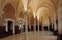 Europe/France/Centre/37/Indre-et-Loire/Amboise : La château - Salle des Etats
