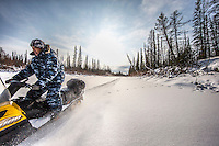 Yegor Dyachkovsky driving a snowmobile as he assists Ion Maxsimovic during a wolf hunt. Ion decribes Yegor as: 'A quiet man, but he works hard'.  An explosion of the wolf population has had a devastating impact on the reindeer herds that are the lifeblood for the indigenous Evenki people of the Siberian state of Sakha (Yakutia). In 2012 it was estimated that between 12,000 - 16,000 reindeer were lost to wolf attacks, at a cost of around 15,000 rubles (153.00 GBP) per animal. In response the local authorities introduced a three month hunt with a bounty to encourage hunters to target wolves with the aim of reducing their numbers from 3,500 to 500. Hunters earn 400 USD (280 GBP) per proven kill, plus a further 400 USD (280 GBP) selling the skin to the fur trade. Ion Maksimovic, the region's most celebrated wolf hunter, killed 23 wolves in 2014, more than any other hunter, and in doing so won a prize of 300,000 roubles (3,060 GBP) and a snowmobile.