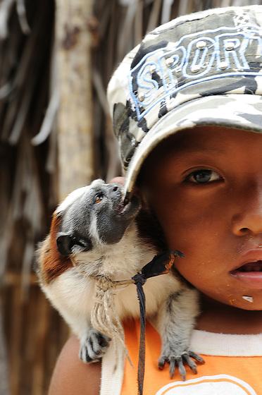 Indígenas guna / niño indígena con mono tití en comarca de Guna Yala, Panamá.<br /> <br /> Guna Indians / boy with titi monkey in Guna Yala region, Panama.