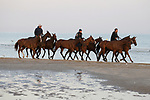 August 14, 2021, Deauville (France) - Horses from the Barrière Deauville Polo Cup training at the beach in Deauville. [Copyright (c) Sandra Scherning/Eclipse Sportswire)]