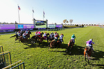 November 7, 2020 : Horses break out of the starting gate during the FanDuel Mile presented by PDJF on Breeders' Cup Championship Saturday at Keeneland Race Course in Lexington, Kentucky on November 7, 2020. Matt Wooley/Eclipse Sportswire/Breeders' Cup/CSM