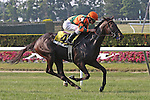 31 May 2010: Check the Label and jockey Ramon Dominguez win the Sands Point at Belmont Park in Elmont NY.