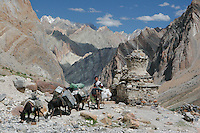 Trekers, Ladakh Himalaya Inde. Photo : Vibert / Actionreporter.com