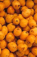 Europe/Espagne/Baléares/Minorque/Mahon : Détail néfles sur un étal du marché du cloître