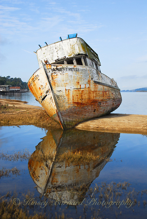 """""""POINT REYES RELIC""""<br /> <br /> Painting like photographic image of an old fishing boat/trawler, the Point Reyes, run aground on a sand bar in Tomales Bay. Blues skies. Blue water. Rusty reflections. This old gal has seen her better days come and go."""